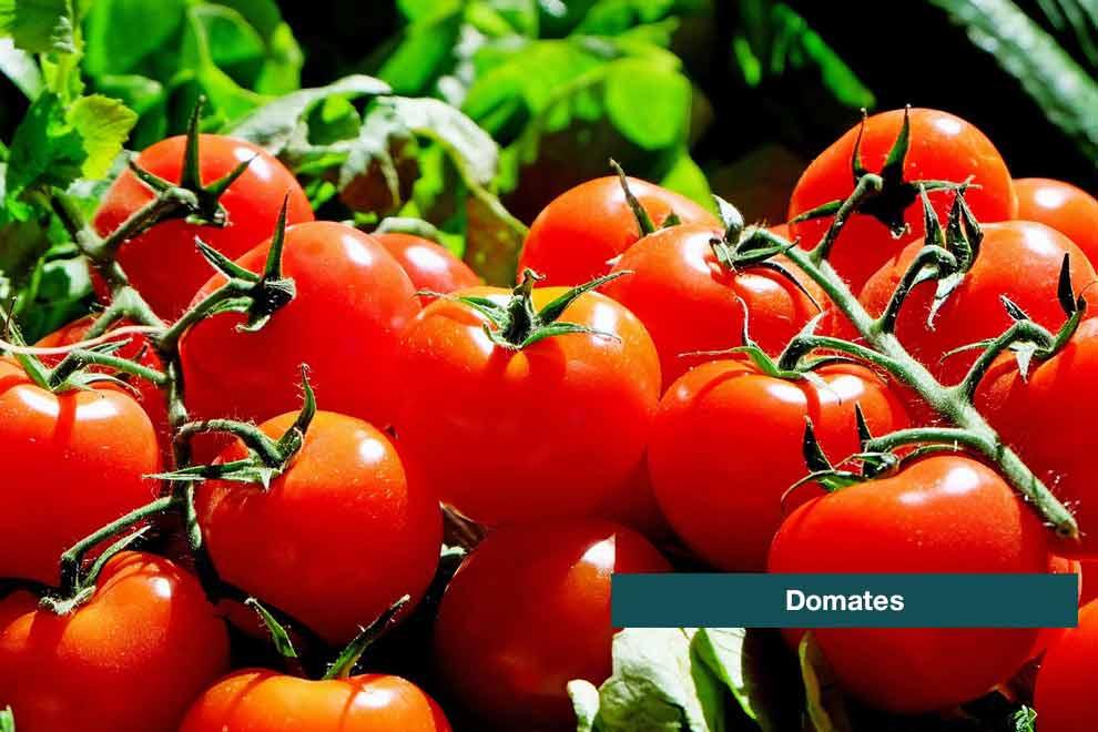 besinlerin-etkilerinin-neler-oldugunu-biliyor-musunuz-2-kanguru-haber-com-990x660